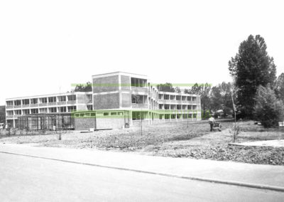 ga%cc%88nsewiese_paddelteich_fotowerk_nidda-003